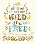 Henry David Thoreau~ My favorite poet and philosopher of 19th century...